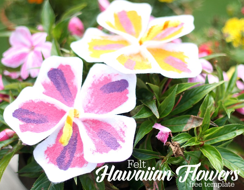 felt hawaiian flowers with free template