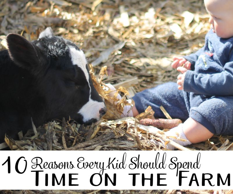 10 reasons every child should spend time on a farm