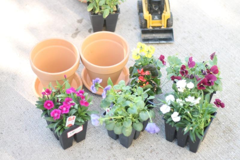 A Child's Mary Garden Supplies